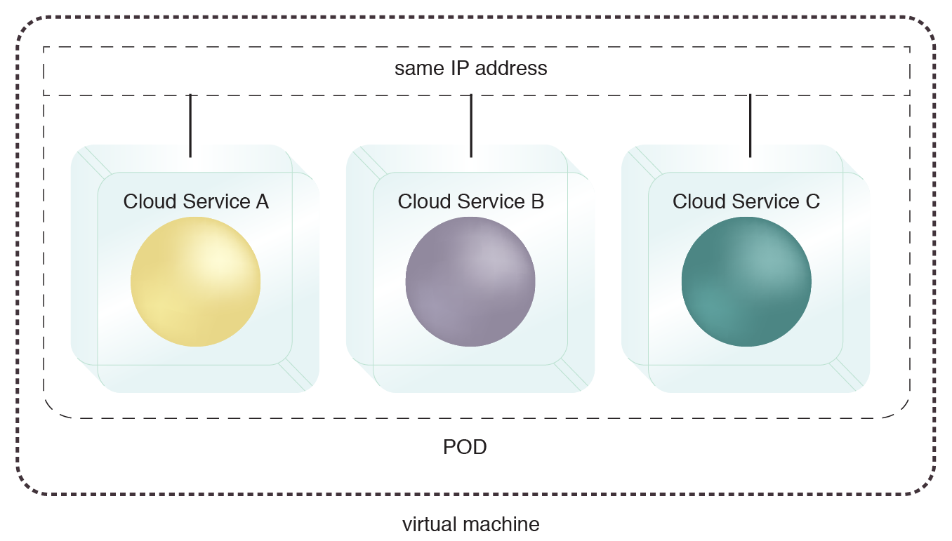 Logical Pod Container: A single pod deployed on a virtual server allows the hosted services to share the same IP address. The pod can also be deployed directly on a physical server.