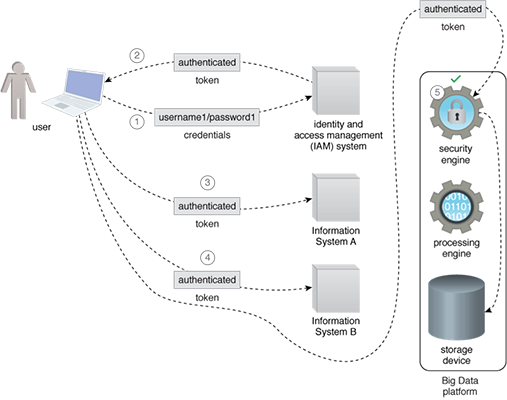 Integrated Access: A system is set up that integrates the Big Data platform's security module with the enterprise identity and access management system to create an SSO system. This provides a seamless experience to the user, as the user is not required to re-authenticate. The responsibility of performing the authentication is delegated to the IAM, and the Big Data platform security module trusts the IAM.