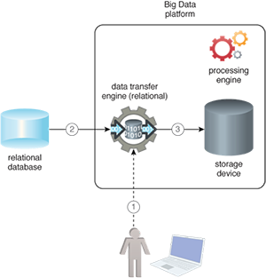 Relational Source: A capability is added to the Big Data platform that enables it to make a direct connection to the relational database via some user interface. The user interface is used to make a connection to the relational database and specify which data needs importing. Apart from providing a single and a uniform interface for connecting with multiple databases, the application of this pattern further saves time by not having to move between two systems.